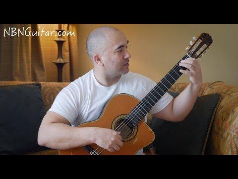Waltz in E minor | Carulli | Classical Guitar Lesson | NBN Guitar