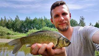 Хотел половить карася на поплавок И вот что из этого вышло Рыбалка в Беларуси 2020