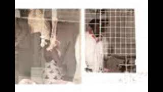 Funny videos of kenya(29)