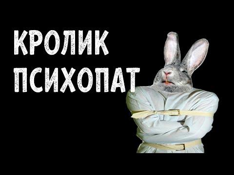 КРОЛИК ПСИХОПАТ