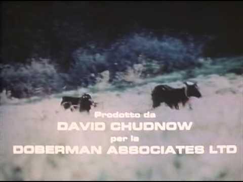 5 dobermann d'oro film