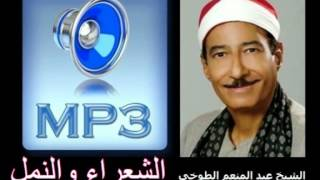 الشعراء والنمل الشيخ عبد المنعم الطوخي