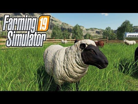 Как ухаживать за овцами в Farming Simulator 19