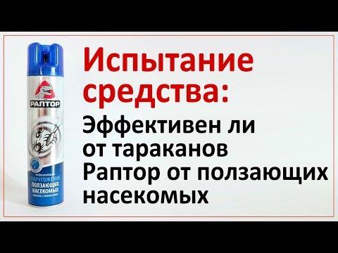 Испытание: как Раптор действует на тараканов