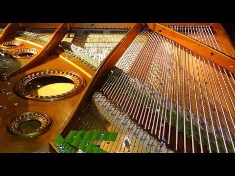 Al Jolson - The Anniversary Song
