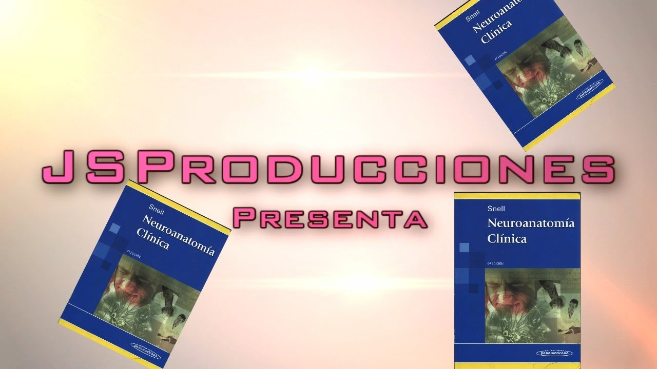 Descargar Libro Neuroanatomia Clinica Snell Sexta - YouTube