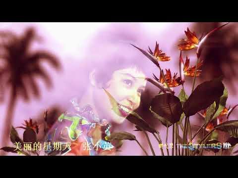 美丽的星期天 by 张小英 Zhang Xiao Ying & The Stylers