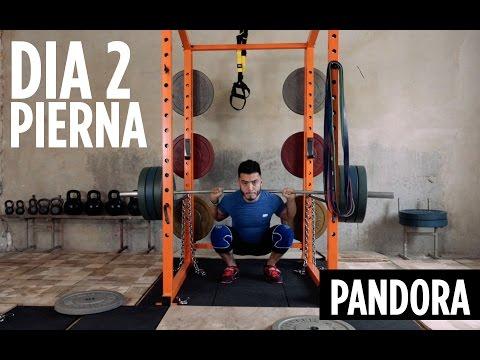 PANDORA DIA 2 : ENTRENAMIENTO DE PIERNA PESADO PARA FUERZA