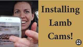 Installing The Nest System Cameras in the Barn  |  Vlog 65