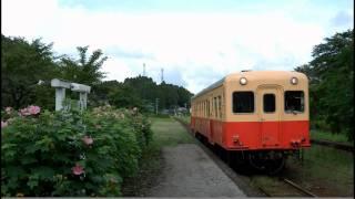 9月4日(日) 芙蓉の咲く小湊鉄道月崎駅