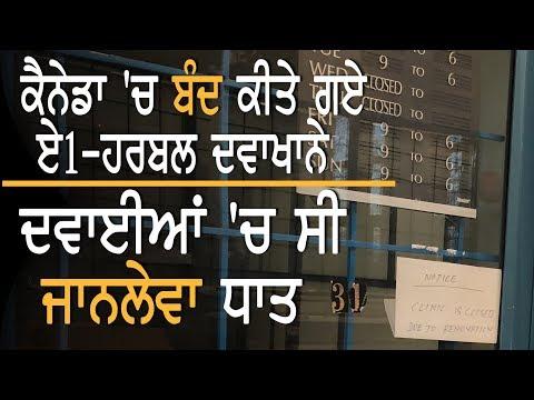 A1-Herbal Ayurvedic Clinics 'ਤੇ Canada 'ਚ ਵੱਡੀ ਕਾਰਵਾਈ    TV Punjab