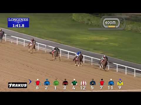 Race 6 Al Maktoum Challenge R3