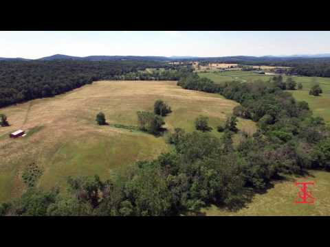 Potts Mill Land - Thomas and Talbot Real Estate