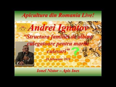 Apicultura din Romania Live 16 februarie 2018, ora 20:00