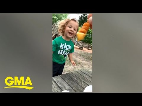 Mark and April - This kid's reaction to a curly fry is how we feel about State Fair food!