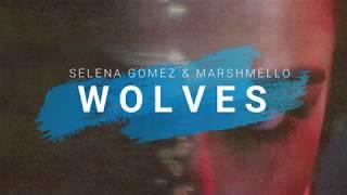 Wolves (LYRICS) - Selena Gomez & Marshmello (Live @ AMAs)