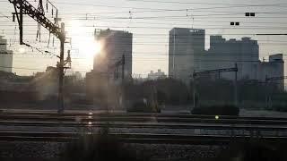 기차여행#5 아빠랑서해금빛열차!! 관광열차타고 여헁고고