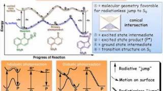 Photochemical Reaction Pathways