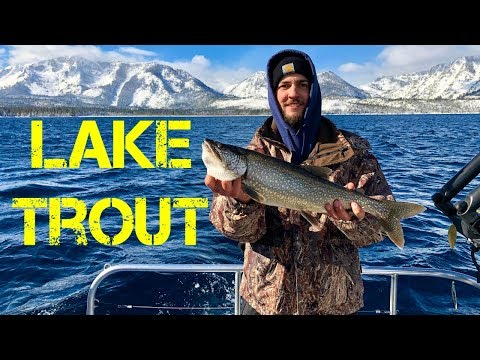 Fishing Lake Tahoe!