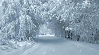 Зимние фоновые футажи часть 3//HD//ProShow Producer