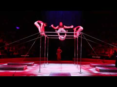 High Bars Parallel Bars Circus Act Tango Event Show Performance Entertainment Acrobatics
