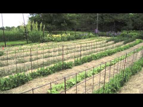 How do you till a garden?