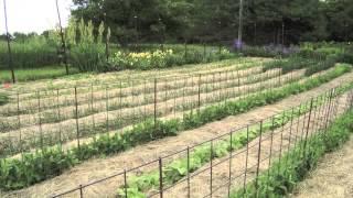 Deep Mulch, No-Till, Garden at Prairie Road Organic