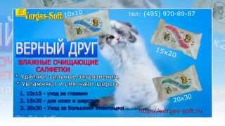 Презентация ВЕРГАС СОФТ. Гигиенические  средства  для ухода за кошками