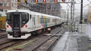 E257系2000番台 武田菱塗装 NA-06編成 at入場 @高崎