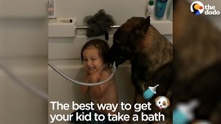 German Shepherd Helps Little Boy Take A Bath