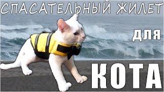Спасательный Жилет для Кота или Собаки с Aliexpress (Cat Dog Pet Life Vest Jacket PFD)(, 2016-07-22T09:05:59.000Z)