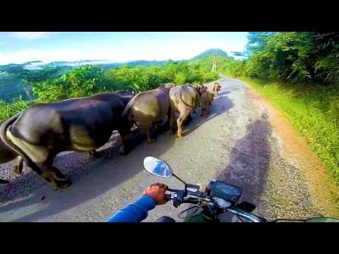 Road Trip Laos Vietnam with Matilda