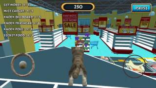 Cat Simulator : Kitty Craft E02 Android GamePlay HD