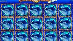 Für 4€ auf Delfinen reiten?! | Dolphins Pearl deluxe
