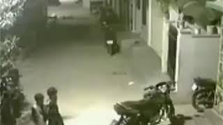 Pertarungan sengit manusia dengan anjing galak