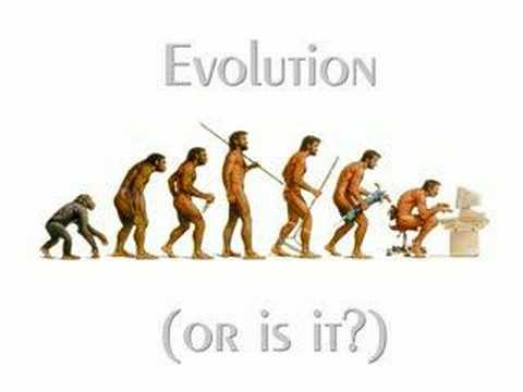 Evolution or is it?