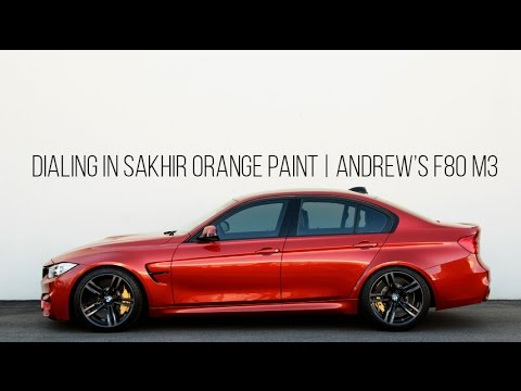 Paint Polishing Tutorial with Andrew's New F80 M3