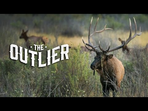 THE OUTLIER - Teaser #1
