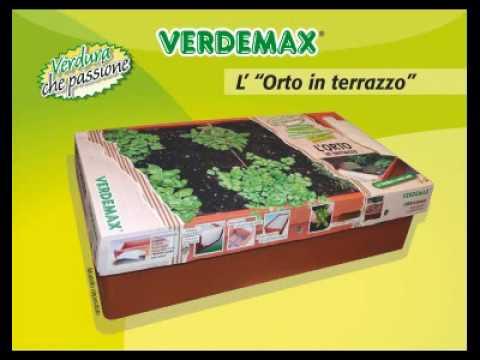 Orto in terrazzo - verdure che passione! - YouTube
