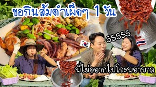 EP.427 Today I want to eat very spicy papaya salad. No one dares to eat with me.5555🔥🔥🔥