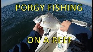 Porgy Fishing On a Reef