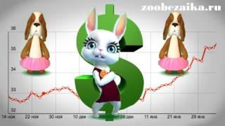 Если доллар упадет   Прикольная песня от Zoobe Муз Зайка   Подари хорошее настроение