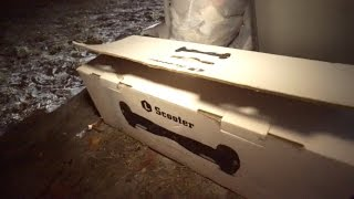 What People Throw Away After Christmas - Dumpster Diving - Trash Picking | OmarGoshTV