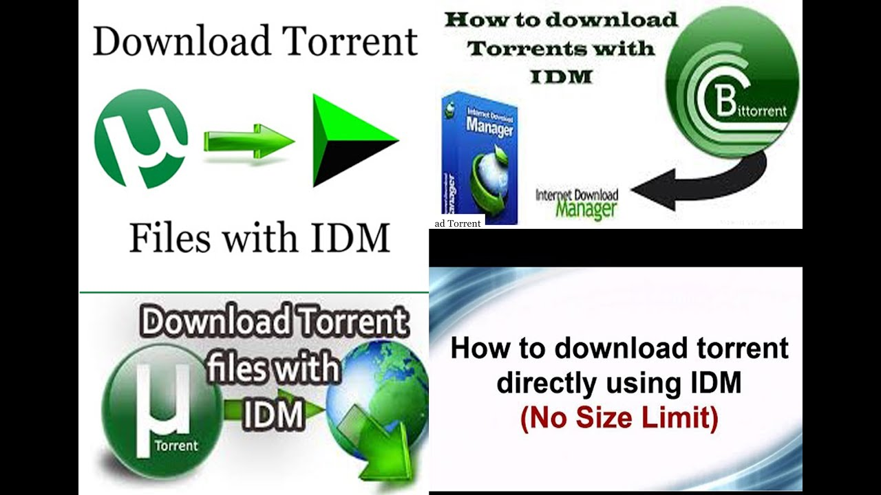 how to torrent files with idm directly with