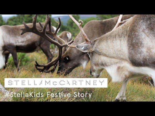 #StellaKids Festive Story by Emma Donnelly