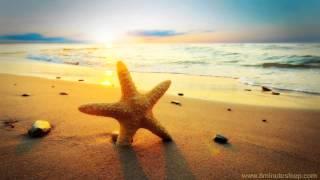 BEACH DAY   Ocean Wave Sounds Help You Relax, Meditate & Fall Asleep (10 Hours)