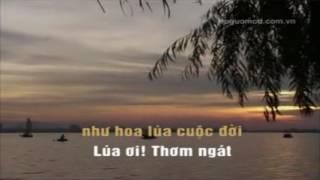 Mùa Xuân Làng Lúa Làng Hoa - Sáng tác: Ngọc Khuê [Karaoke MV HD]