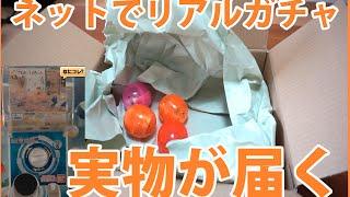 実物が家に届くリアルガチャが存在した thumbnail