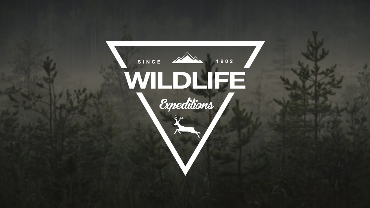 how to design a wildlife triangle logo in photoshop youtube