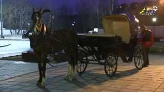 Конный клуб в Дзержинском